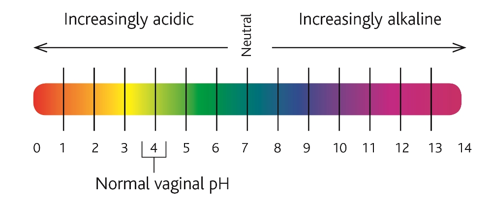 Why vaginal ph is essential to your intimate health
